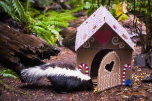 Skunk with Winter Wildland gingerbread house