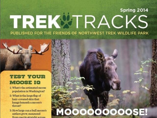 Trek Tracks newsletter spring 2014