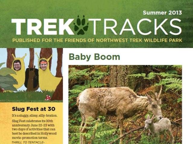 Trek Tracks newsletter summer 2013