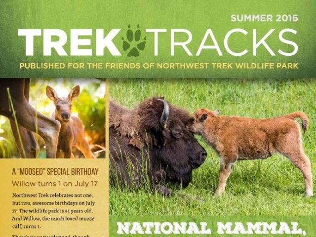 Trek Tracks newsletter summer 2016