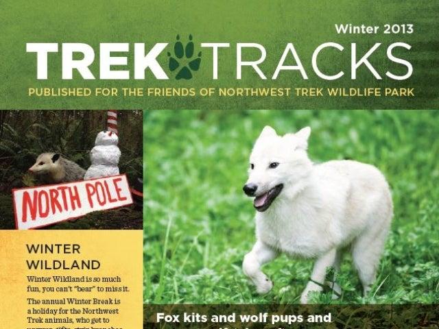 Trek Tracks newsletter winter 2013