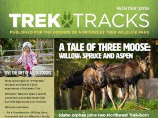 Trek Tracks newsletter winter 2016
