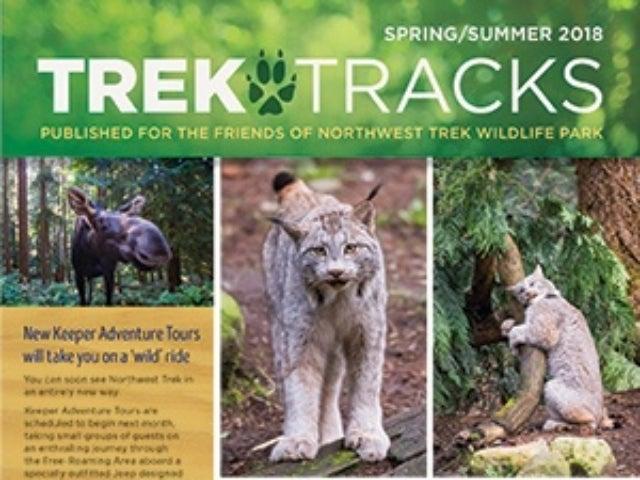 Trek Tracks newsletter spring summer 2018