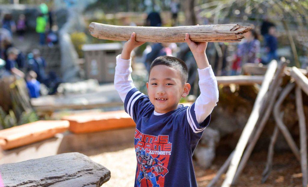 Boy holding branch