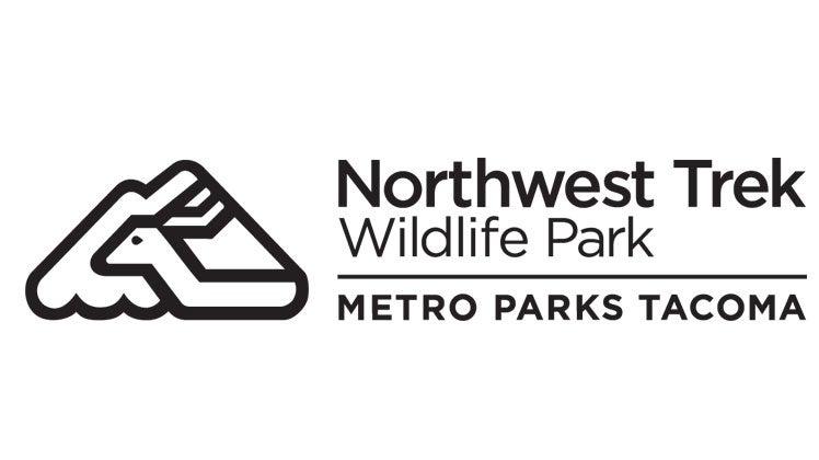 northwest trek wildlife park native northwest animals zipline and