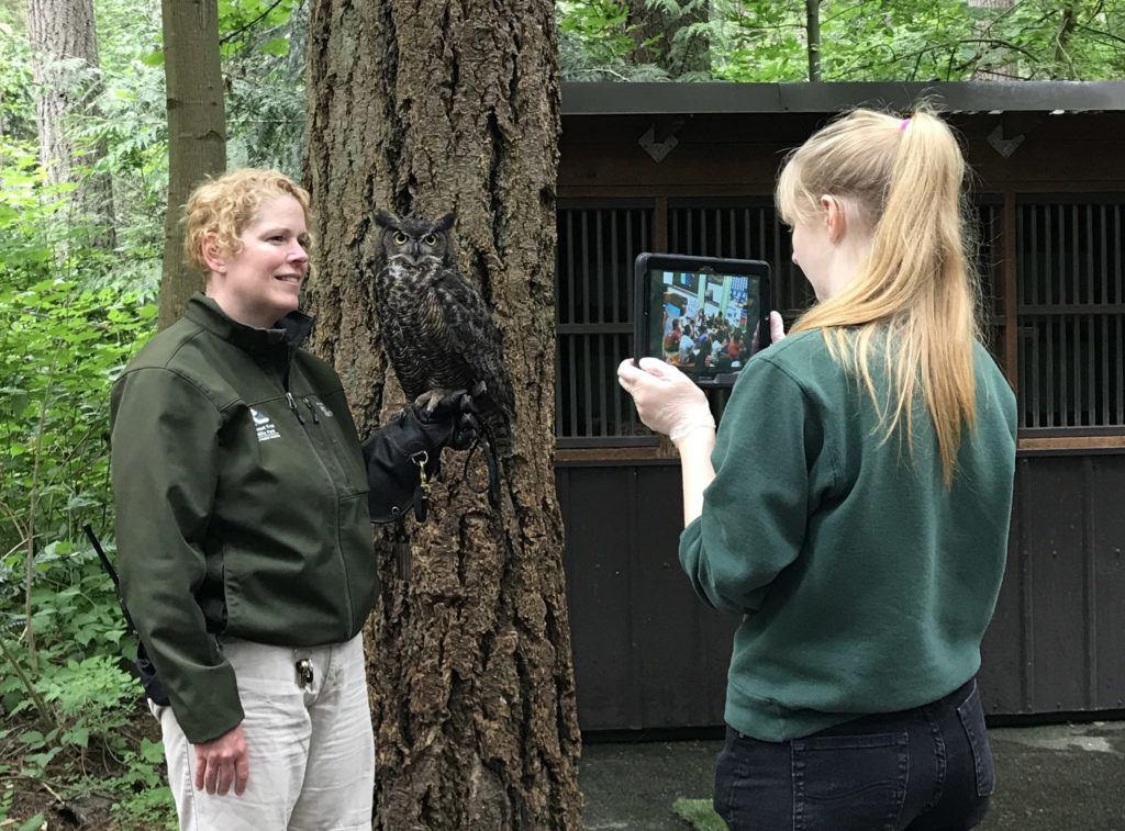 keeper owl virtual