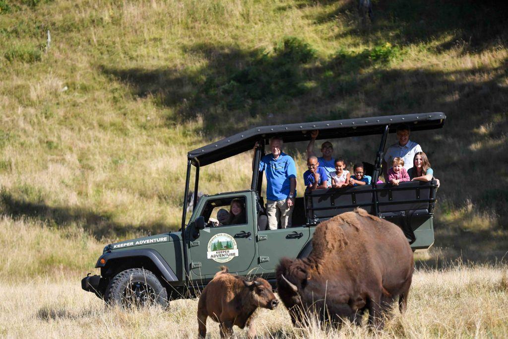 keeper tour bison logo