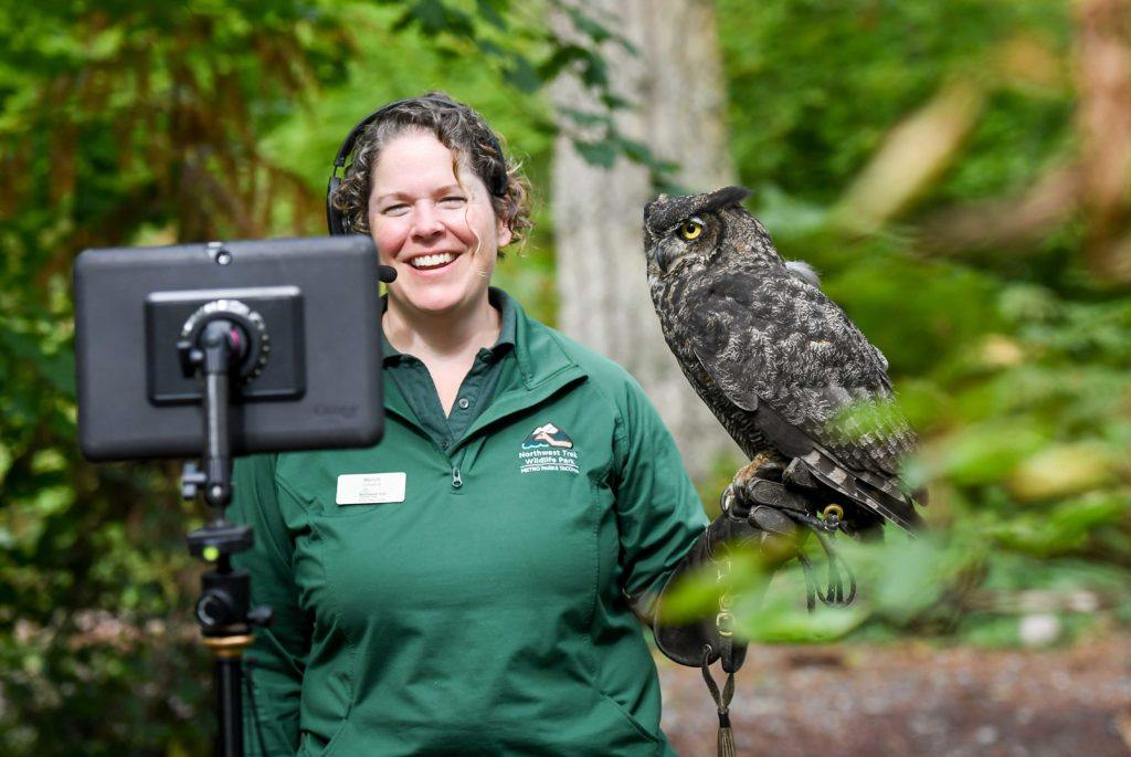 virtual field trip keeper with owl