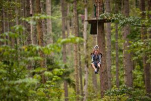 man on zipline in trees