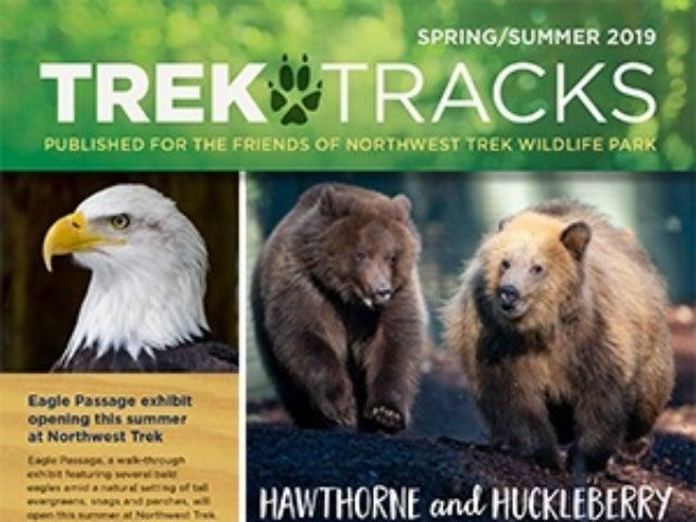 Trek Tracks Spring Summer 2019