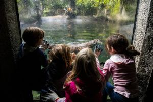 kids and river otter