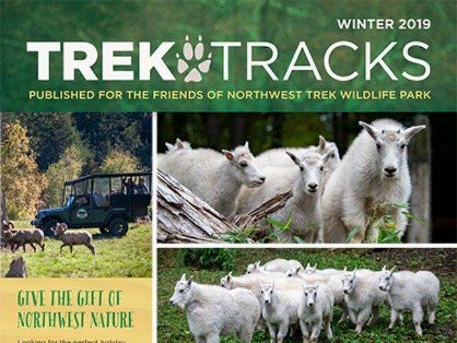 Trek Tracks winter 2019