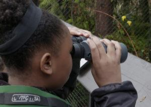 girl looking through binoculars