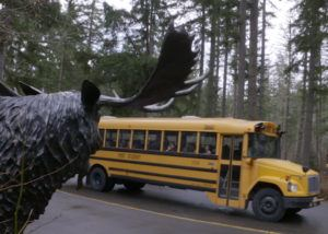 school bus in wildlife park