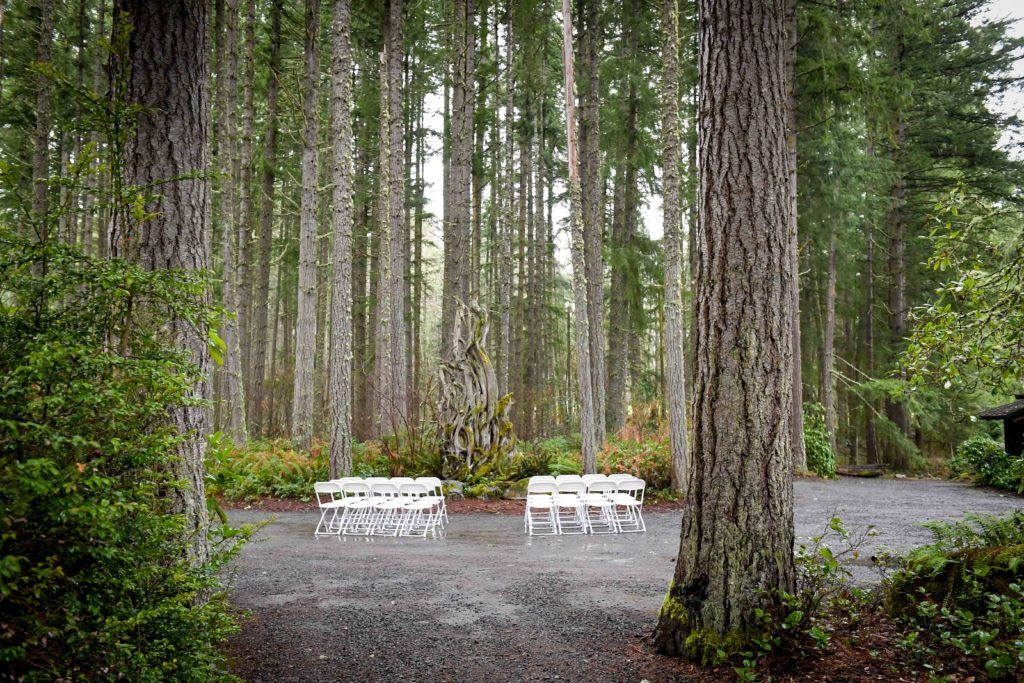 wedding seats in forest