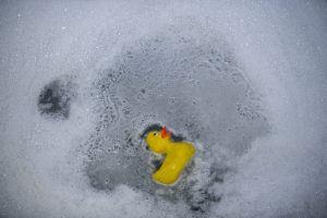 bubble bath duck