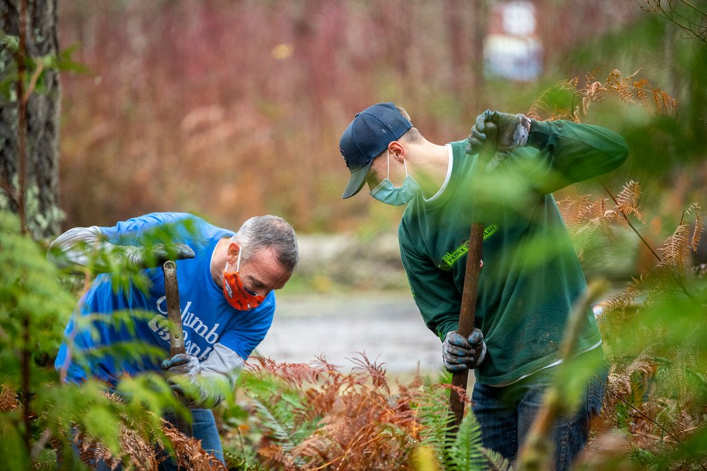 men planting trees
