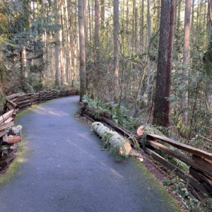 log on path
