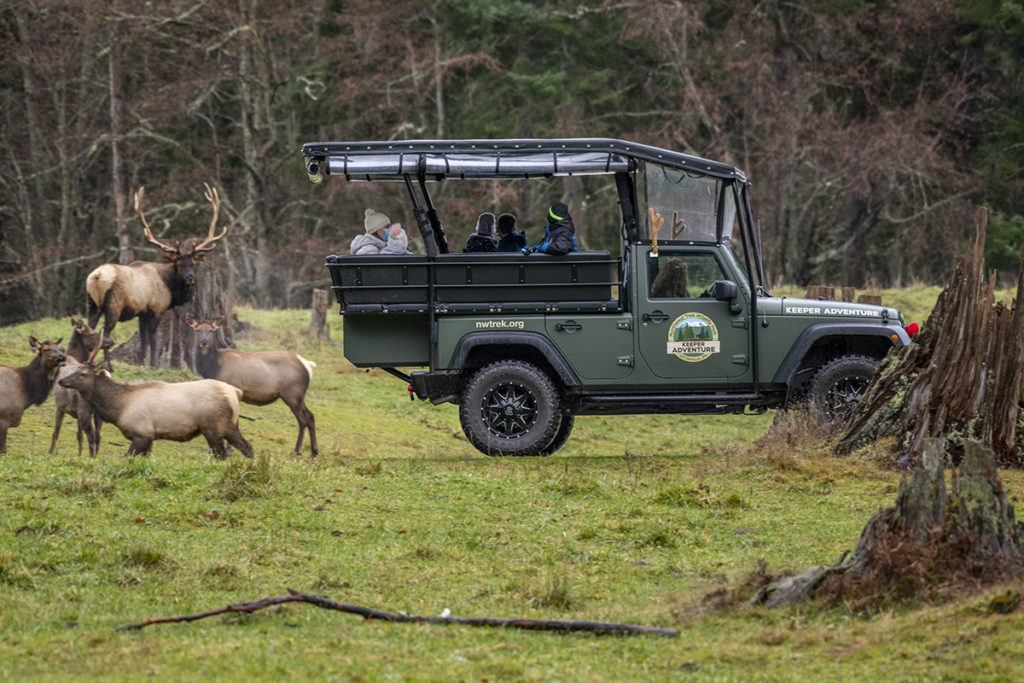 keeper tour with elk