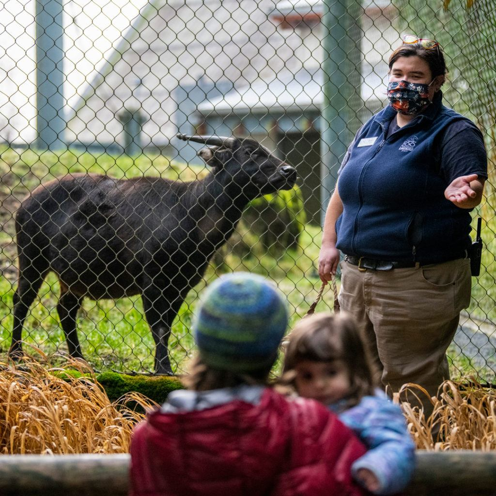 keeper gives chat near anoa